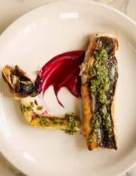 ovenbird mackerel