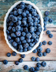 Alabama Fairhope Blueberries