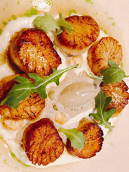 hot and hot fish club scallops