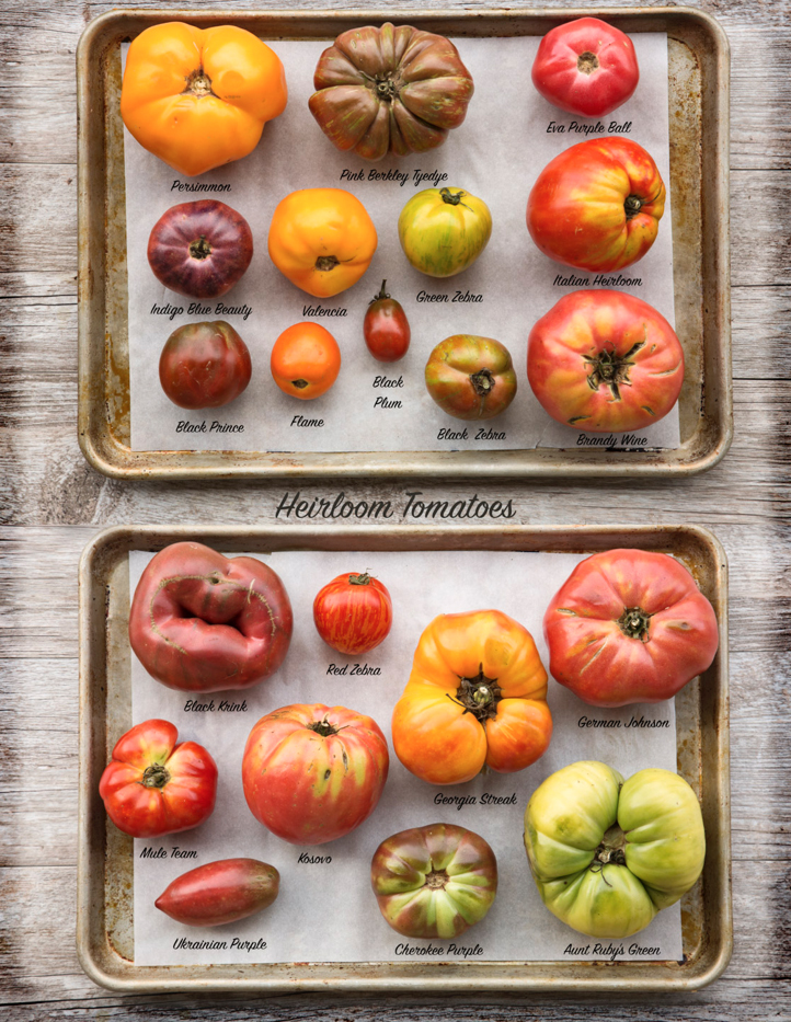 alabama heirloom tomatoes